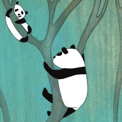 Curious pandas