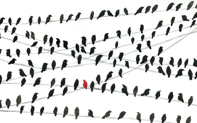 - a, animals, bird, birds, black, in, line