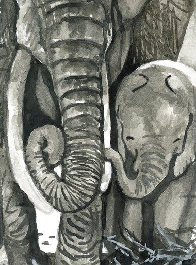 Elephant baby holding on to tusk