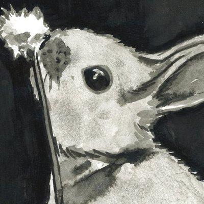 Bunny smelling dandelion