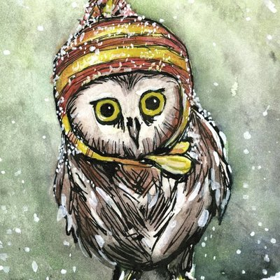 Cold Owl