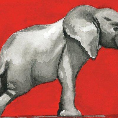 Elephant Walking Tight Rope