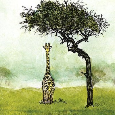 Hello, Giraffe