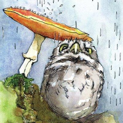 Owl Under Mushroom