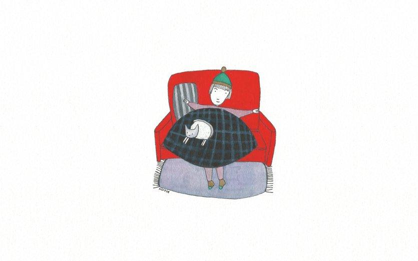 - bed, cat, comfort, happy, hat, home, love