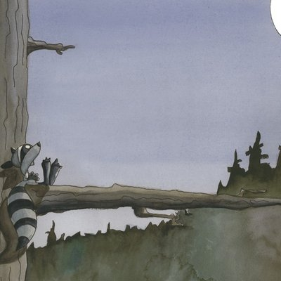Raccoon and moon