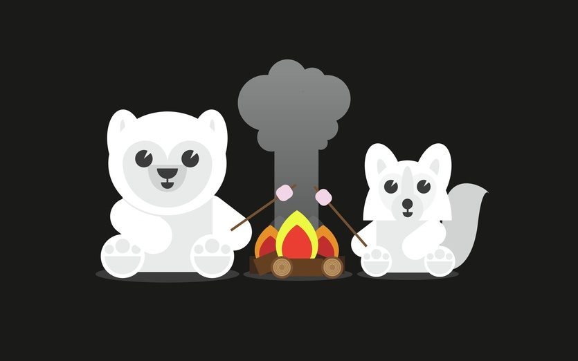 - adorable, adorbs, bear, black, brown, camp, campfire