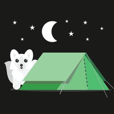 Arctic Fox Camping