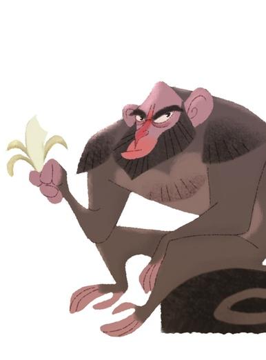 Small Monkey naughty