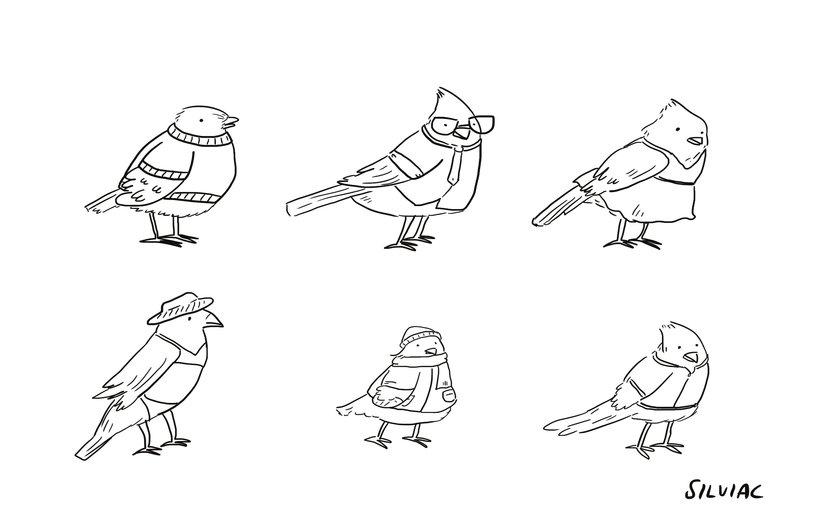 - adorable, adorbs, animal, animals, art, bird, birds