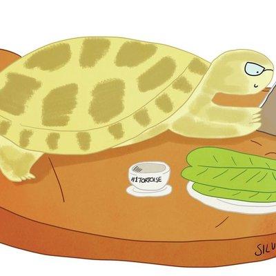 Tortoise Reading