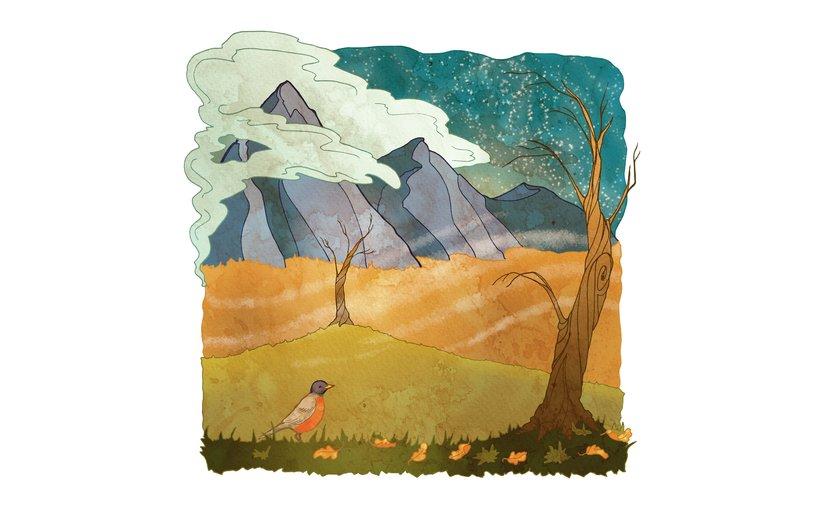 - autumn, bird, cloud, mountain, robin, tree, wind