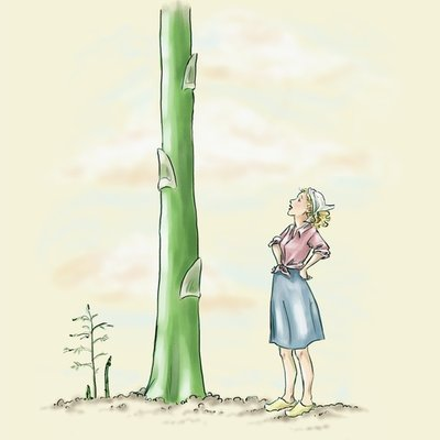 The Giant Asparagus