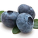 BlueBlueBerry
