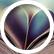 Bookworm_1004