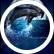 Dreamingdolphins2