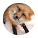 Foxie22