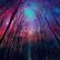 GalaxyForest101