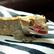 GeckoGirl29