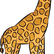 Giraffesrmyspiritanimal
