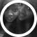 NgoziA_