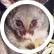 Possum24