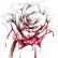 RedRoses1469