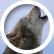 Sacredwolf