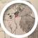 StoryWriterCrystal554