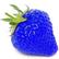 TheBlueStrawberry