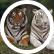 Tigertrio