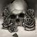Willow_Skull