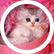 cat1ady