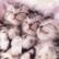 catgirl5040