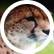 cheetah2003