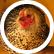 chickens1234567