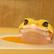 geckologic