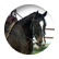 horselover81