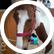 horsemadgirl