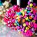 lollipop10123456