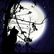 moonlight_silvercat