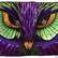 purpleowl29