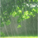 rain12345678
