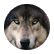 wolfheart3325