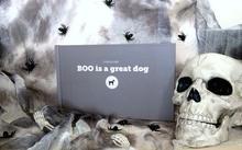 Host a Spooky Storytime