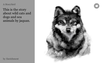 This is the story about wild cats and dogs and sea animals by jaquan.