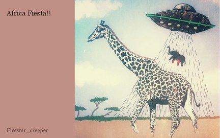 Africa Fiesta!!