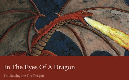 In The Eyes Of A Dragon