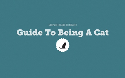 Guide To Being A Cat