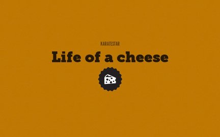 Life of a cheese